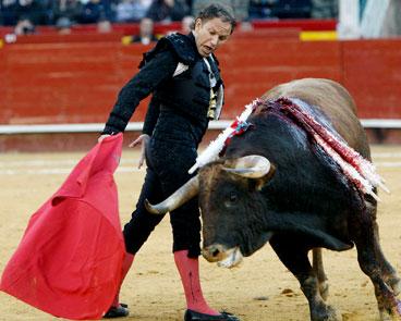 """""""Toro, toro mas de lejecitos mi alma que donde me cojas me cago del susto"""""""