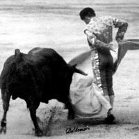Torero de Toreros