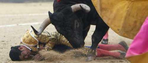 Cayó herido Garibay.