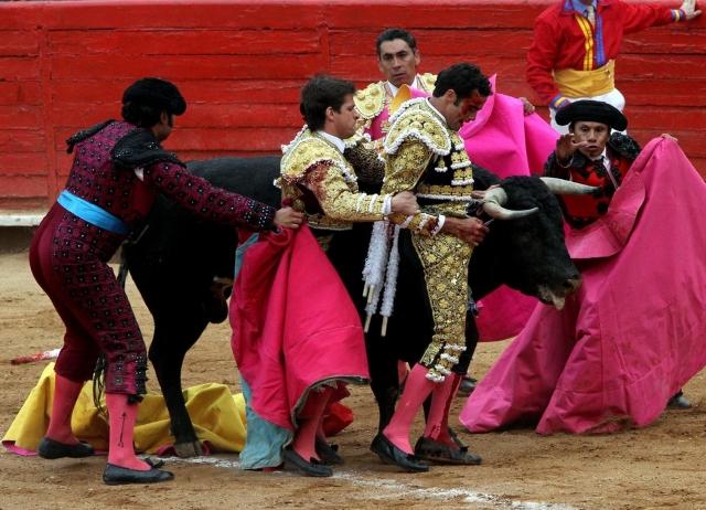 Superdomingo y Superdesinfle – Drama y Decepción acumulados en La México.