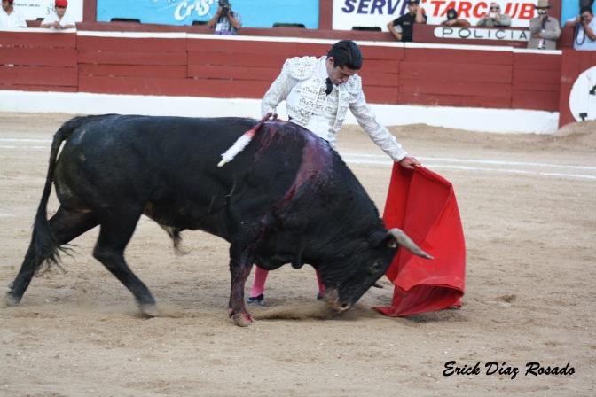 Tarde de Toros. Así de simple, de TOROS – Ética, Estética y Patética en La Mérida.