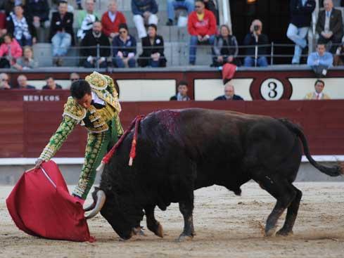 El Fundi fue el triunfador de la tarde en Madrid tras cortar una oreja del tercer toro de la tarde, un animal de José Luis Pereda, al que ha cuajó una faena de maestría con la que puso de acuerdo a toda la afición. Foto Julián López / Aplausos