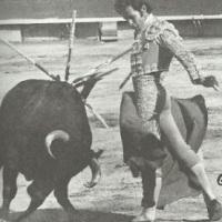 Ocho con ocho - Aurelio García Montoya por Luis Ramón Carazo