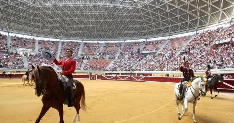 caballos--665x350