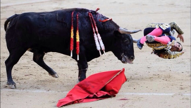Ivan Fandiño cayo herido en Las Ventas.