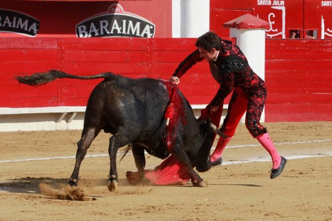 La Querencia del Matarife – Triunfo Legítimo de Diego Emilio.