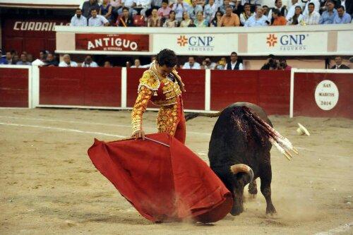 Y el trapio? Vergonzoso lo que lidian algunos toreros nacionales como Juan Pablo Sanchez.