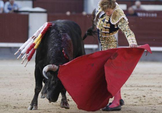 El novillero Román Collado da un pase a uno de sus astados durante su faena. / paco campos (efe)