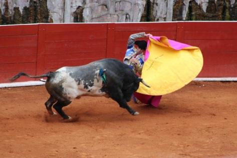 Arturo Macías en la larga cambiada al toro de Pozo Hondo.