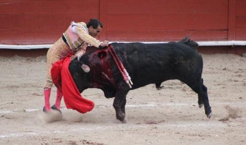 En la suerte natural, en el sitio exacto, Fadiño cobra la gran estocada. Foto: @MyRyCar.