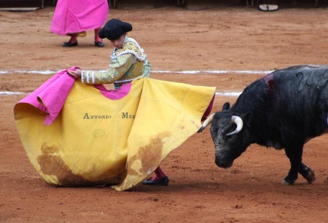 Seda y Oro de Antonio Mendoza – Pincha Triunfo en Lluvioso Cierre.