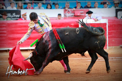 El pase con la derecha de Fermín RIvera, el toro en la bamba de la muleta. FOTO: Humbert.