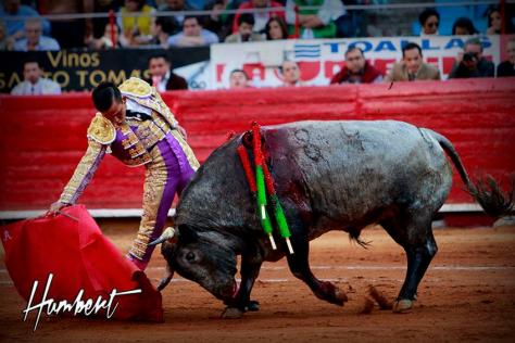 """Derechazo de Mario Aguilar a """"Nevaito"""" de Xajay. FOTO: Humbert."""