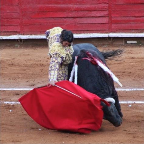 Derechazo de Morante a Debutante