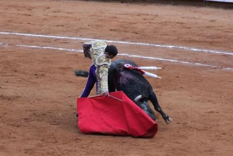 Derechazo Juan Pablo Campo Real
