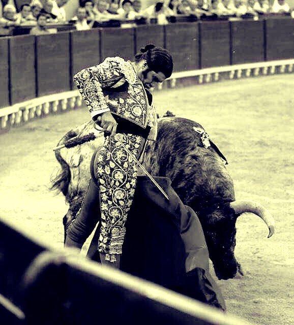 Resultado de imagen de Morante a un toro de Domingo Hernández en Aranjuez