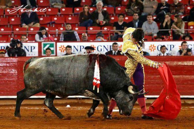 La Cadencia del Paso – Creciente Confrontación entre Flores y Rivera.