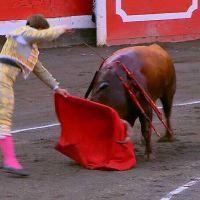 ¿Rey de espadas? ElJuli y Roca Rey en Bilbao