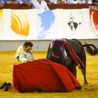 Málaga: Ponce hace realidad su sueño con el indulto de Jaráiz en 'Crisol'