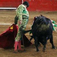 Obispo y Oro: La ida de Morante