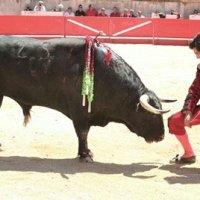 Los porqués de la retirada de Morante de la Puebla