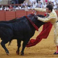 FERIA DE SAN MIGUEL: Sevilla, una afición 'low cost'