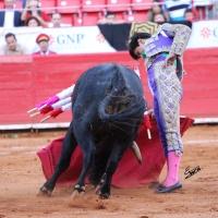 Orejas de Tormenta – Jesús Morales Tropieza a La México (Otra Vez)