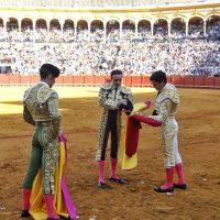 Feria de San Miguel de Sevilla: Una alternativa ilusionante… y una despedida sentida