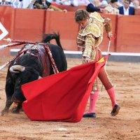 Si no hay respeto para el toro, difícil es que lo haya para la tauromaquia