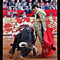 Es lo que digo yo: El toreo no ha muerto, regresó José Tomás