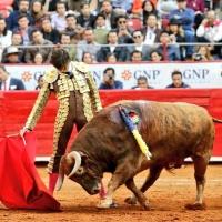 Los de la Joya toros pa' toreros que son una joya Por Bardo de la Taurina