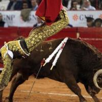 Plaza México: Encierro con trapío de La Joya; dos faenas malogradas con la espada y 2 toros de regalo
