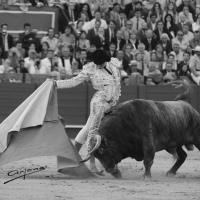 """Crónica de Sevilla: """"El Juli y Roca Rey, una rivalidad en ciernes"""""""
