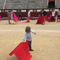 El sector taurino asegura que la fiesta no perjudica a la infancia
