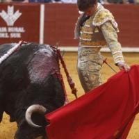 Feria de Córdoba: La corrida de toros sin toros
