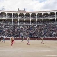 """Asociaciones """"animalistas"""" se manifestarán este domingo en #Madrid"""