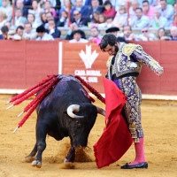 Feria de Córdoba: Califato Morantista