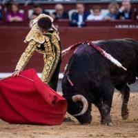 Ocho con Ocho: Buena Feria Por Luis Ramón Carazo