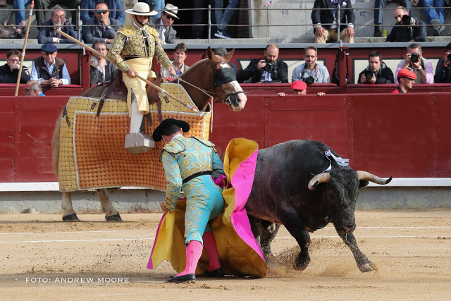 Octavio Chacon, torero. Foto Andrew Moore.
