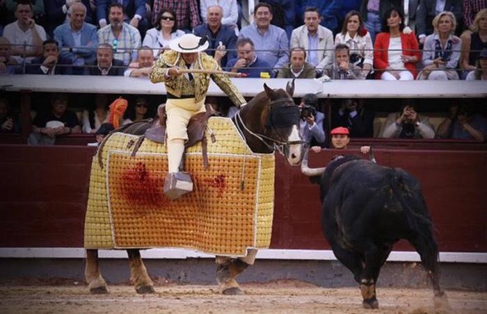 El picador Agustín Navarro y el toro 'Coplero', de Victoriano del Río. MANOLO BRIONES