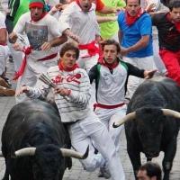 """""""No vamos a mandar encierros en Pamplona sin la celebración de las corridas de toros"""": Ganaderos"""