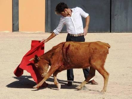 José Tomás tentando a una vaca de 'Los Rodeos' en la plaza de la finca. / LUICHE CALZADO
