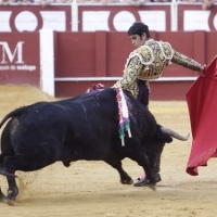 """MIGUEL ÁNGEL PERERA: """"El único torero que fue honesto del G10 fue Sebastián Castella"""""""