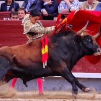 Solo para Villamelones: Los toreros emergentes