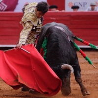 Ocho con Ocho: La sucesión en el toreo Por Luis Ramón Carazo