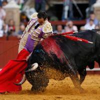 «El Cid» anuncia su despedida de los ruedos para el 2019