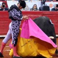 Morante reaparece en La México el próximo 12 de diciembre: ¿Con televisión o sin televisión?