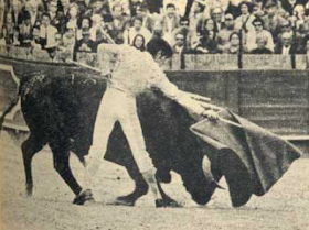 Ruiz Miguel echando
