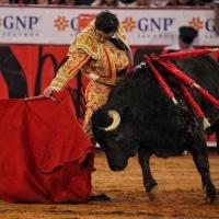 Corrida Guadalupana: Pachanga pueblerina