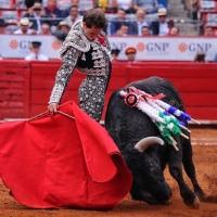 Plaza México: Soberbias faenas de Arturo Saldívar en la séptima corrida de la Temporada